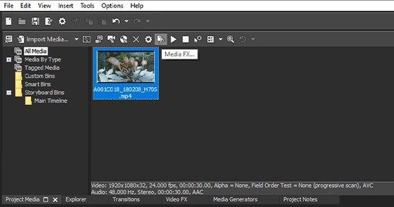 Step 4: Add Effects to Media