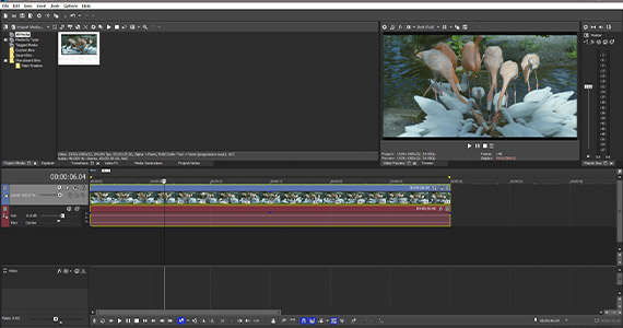 Step 7: Add Effects to the Video Bus